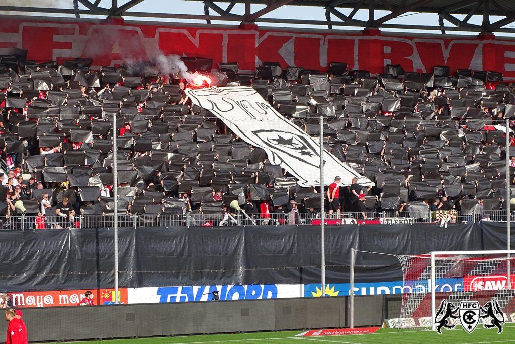 13. Spieltag: Hallescher FC vs. SV Meppen 1912